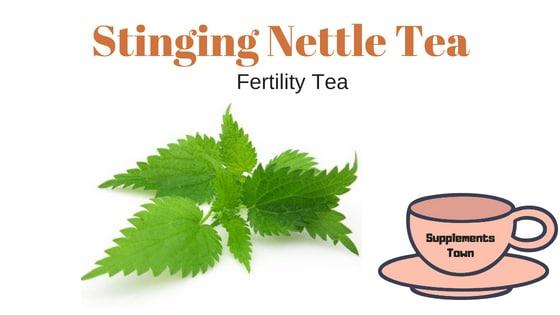 Stinging Nettle Fertility Tea